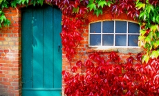 10 Easy Fall Maintenance Projects