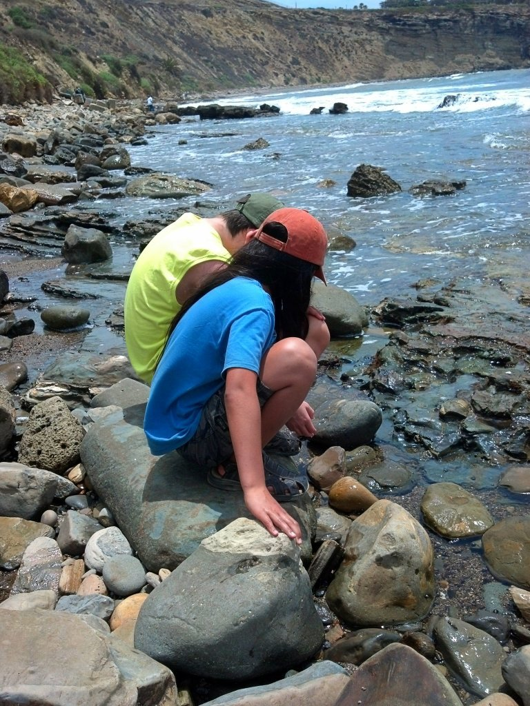 Tide pools at Wilders Addition Park
