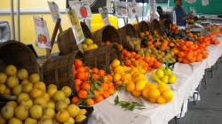 Farmers Market Guide to the South Bay